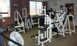 exercise_equipment_250x150